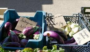 Nos beaux légumes !