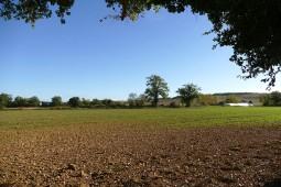 Vue de la ferme depuis l'Arbre Gardien
